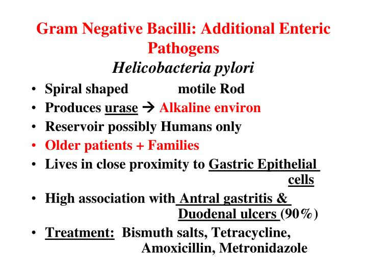 Gram Negative Bacilli: Additional Enteric Pathogens