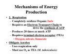mechanisms of energy production1