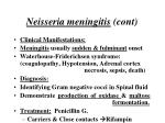 neisseria meningitis cont