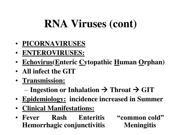 RNA Viruses (cont)