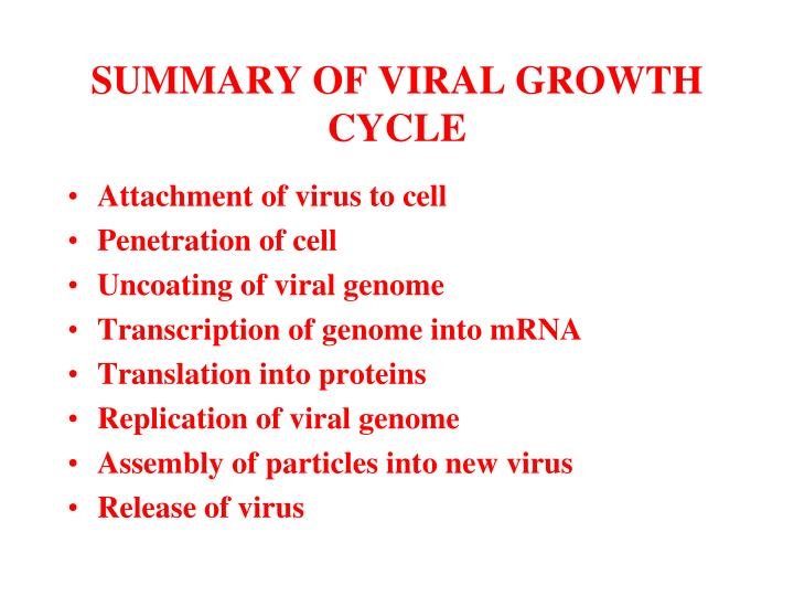 SUMMARY OF VIRAL GROWTH CYCLE