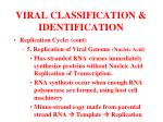 viral classification identification15