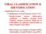 viral classification identification17