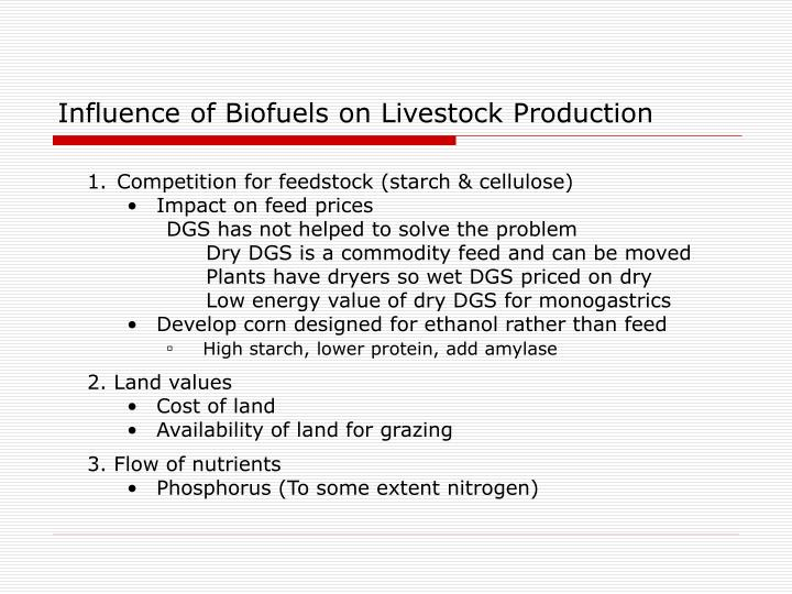 Influence of Biofuels on Livestock Production