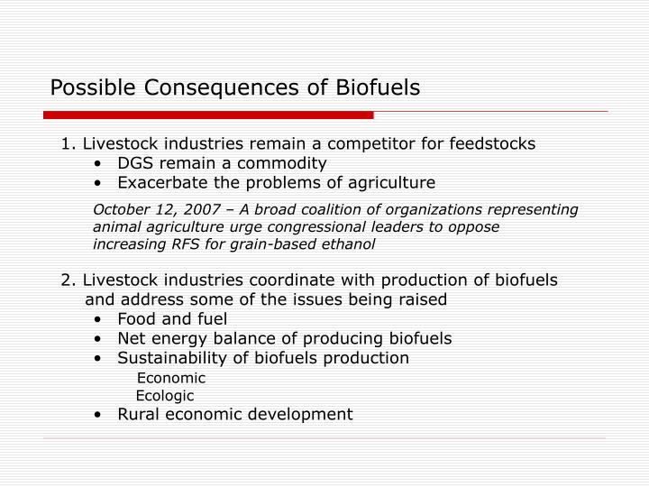 Possible Consequences of Biofuels