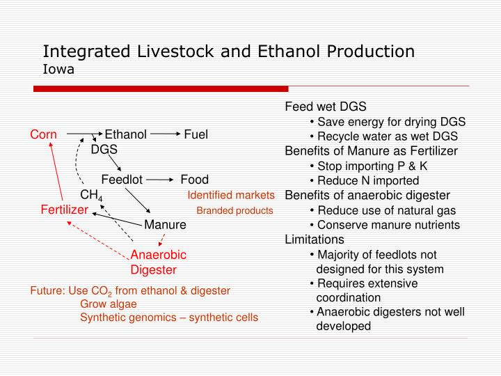 Integrated Livestock and Ethanol Production
