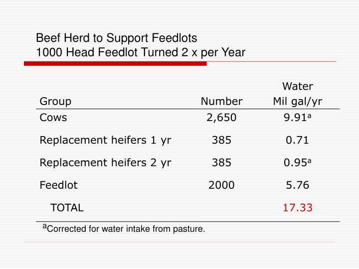 Beef Herd to Support Feedlots