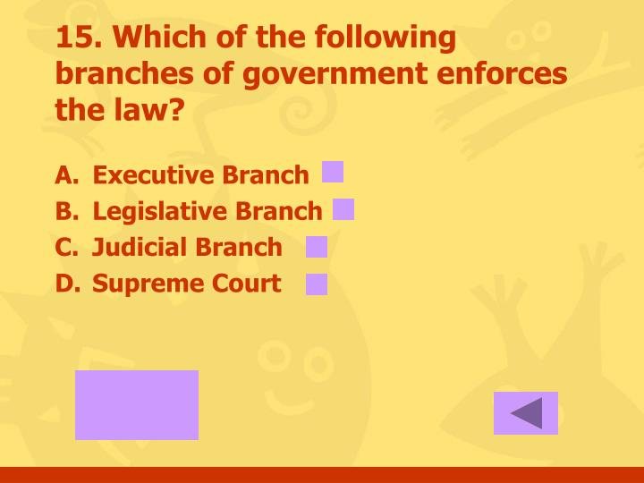 15. Which of the following branches of government enforces the law?