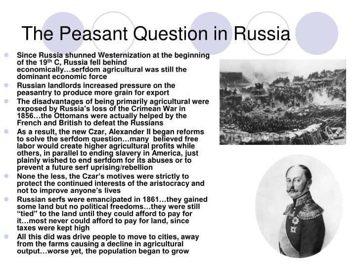 The Peasant Question in Russia