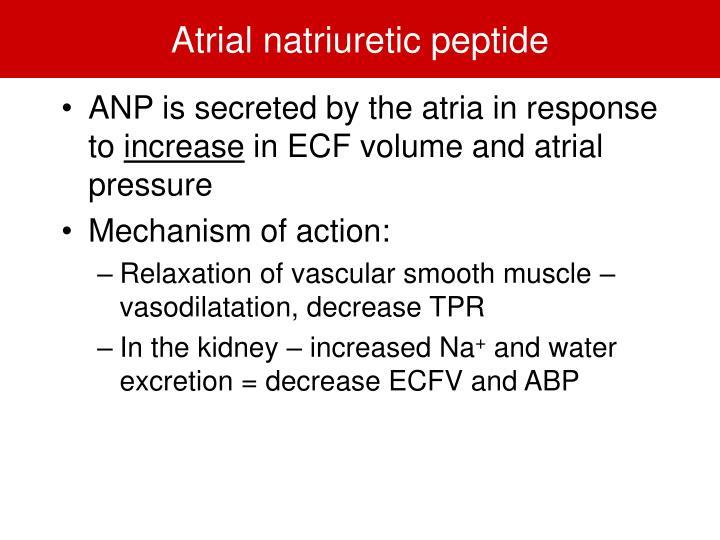 Atrial natriuretic peptide