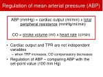 regulation of mean arterial pressure abp