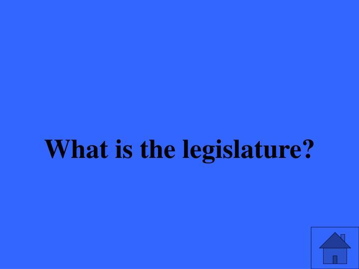What is the legislature?