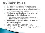 key project issues