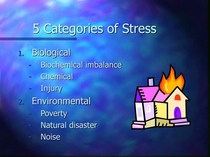 5 Categories of Stress