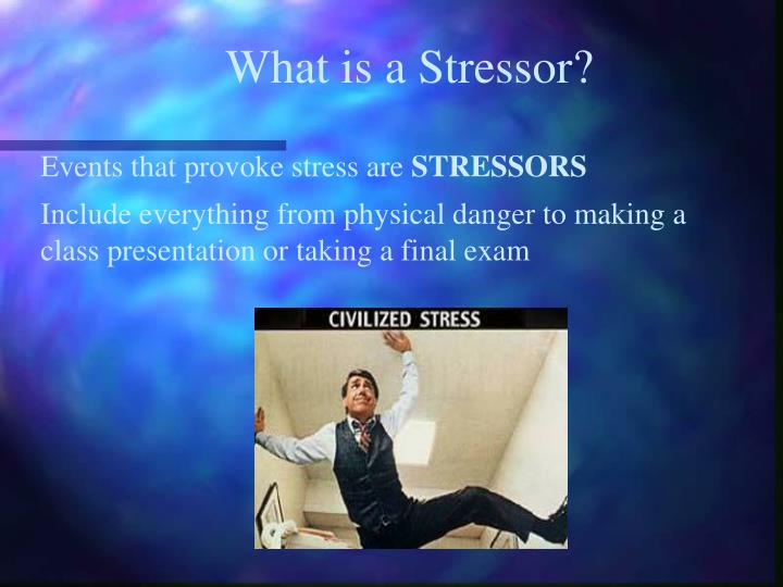 What is a Stressor?