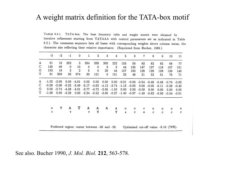 A weight matrix definition for the TATA-box motif