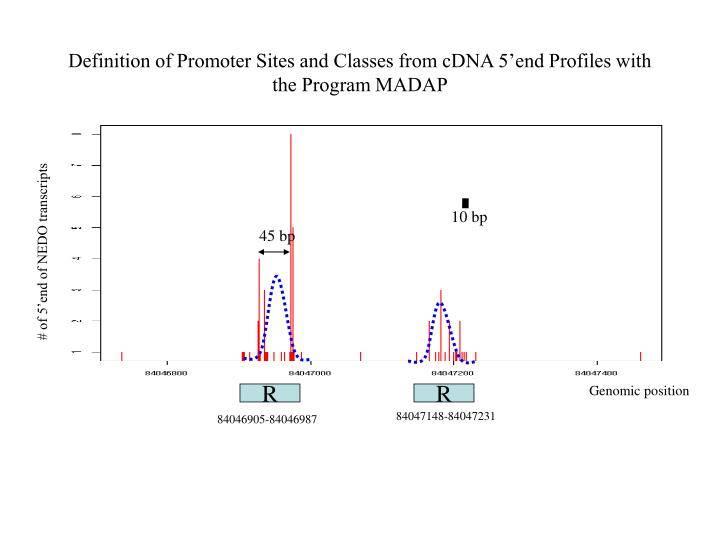 Definition of Promoter Sites and Classes from cDNA 5'end Profiles with the Program MADAP