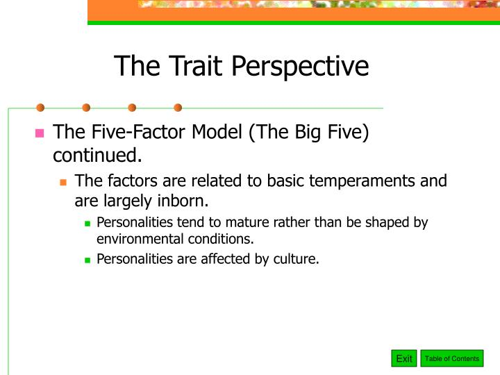 The Trait Perspective