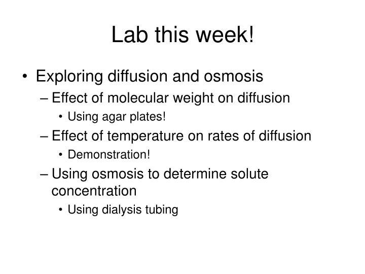 Lab this week!