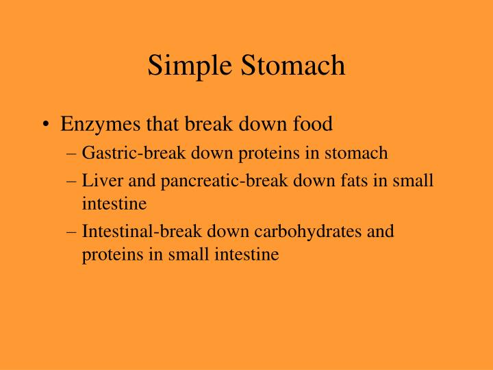 Simple Stomach