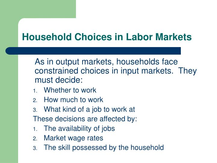 Household Choices in Labor Markets