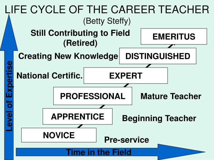 LIFE CYCLE OF THE CAREER TEACHER