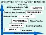 life cycle of the career teacher betty steffy
