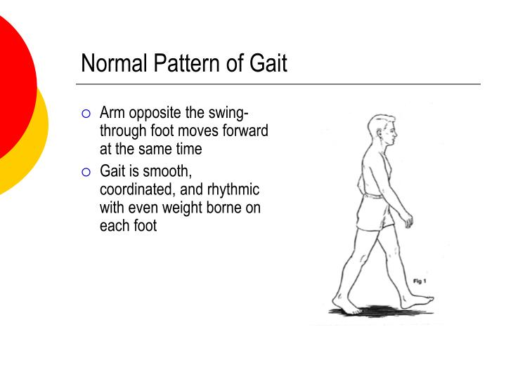 Normal Pattern of Gait