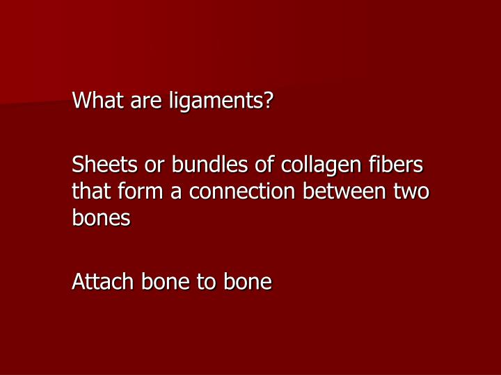What are ligaments?