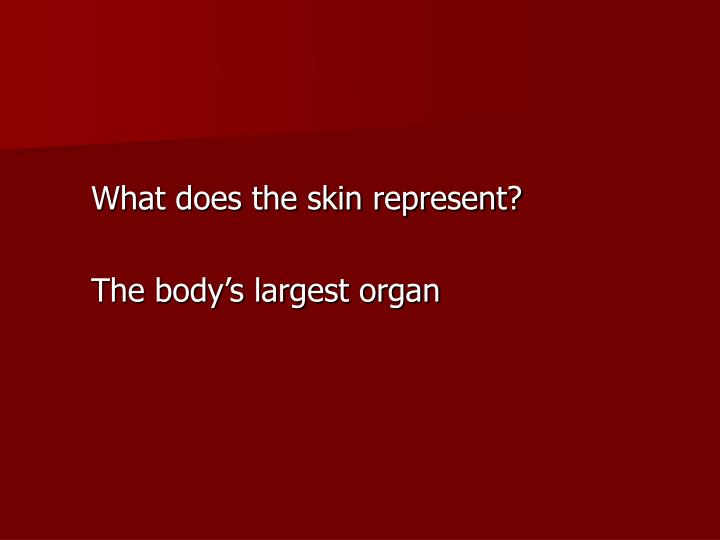 What does the skin represent?