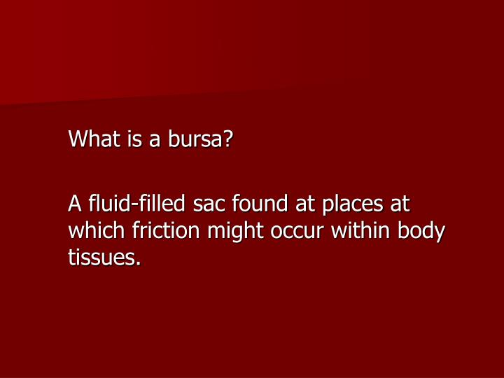 What is a bursa?