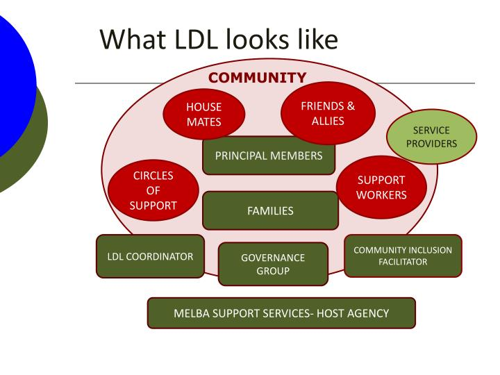 What LDL looks like