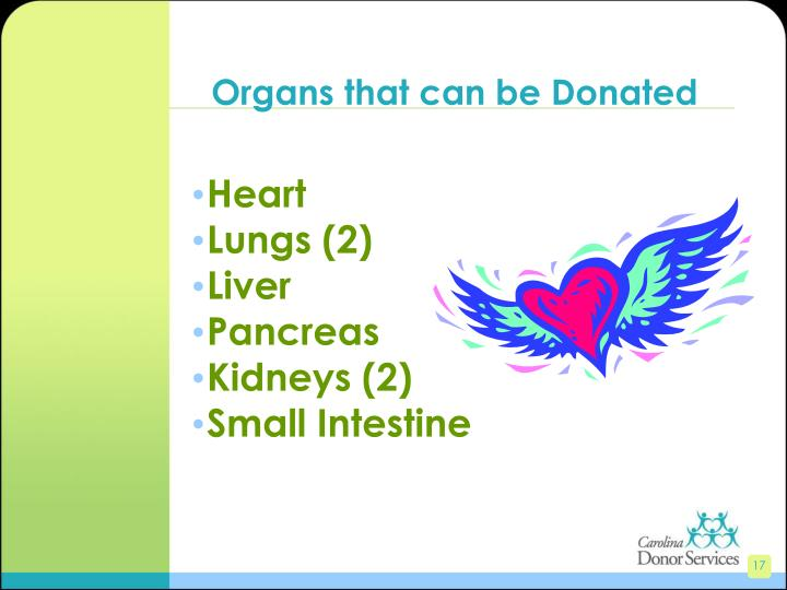 Organs that can be Donated