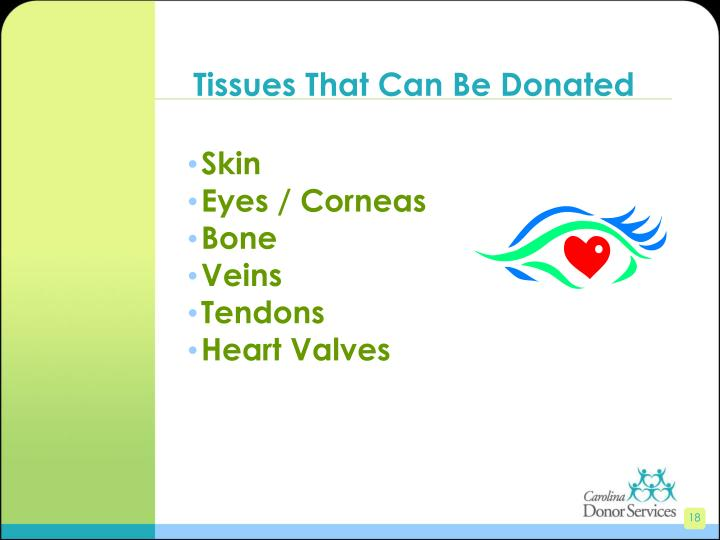 Tissues That Can Be Donated
