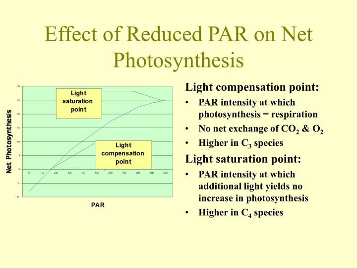 Effect of Reduced PAR on Net Photosynthesis