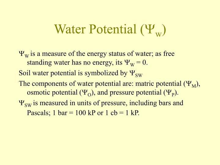 Water Potential (