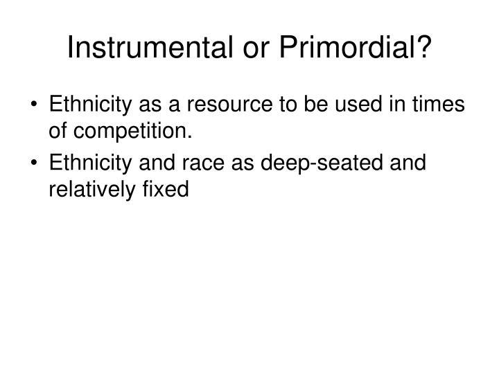 Instrumental or Primordial?