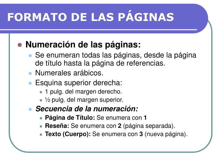 FORMATO DE LAS PÁGINAS