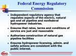 federal energy regulatory commission