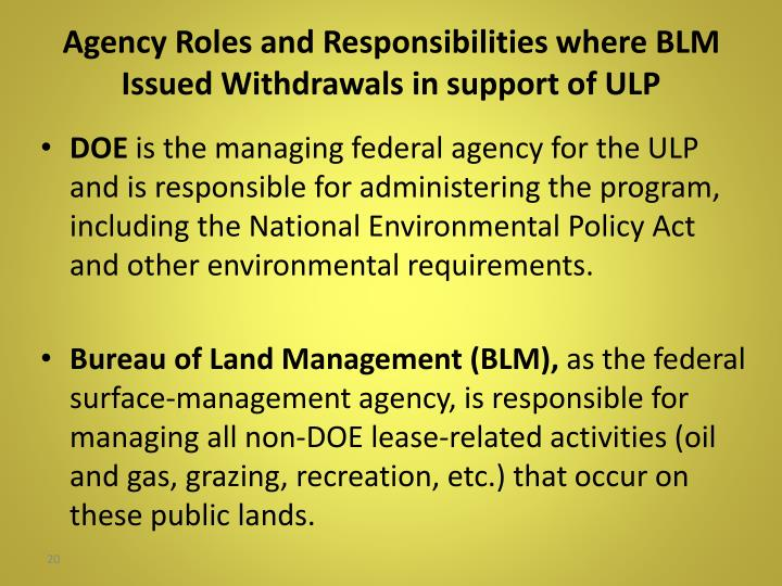 Agency Roles and Responsibilities where BLM Issued Withdrawals in support of ULP