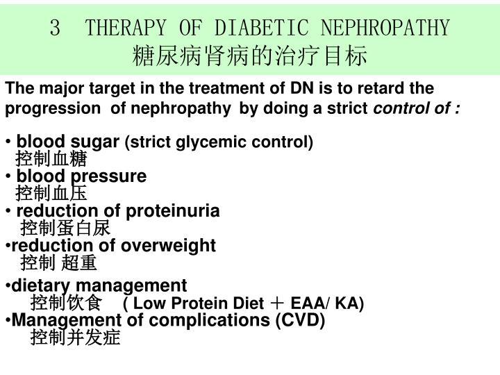 3  THERAPY OF DIABETIC NEPHROPATHY