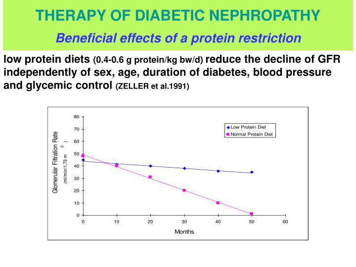 THERAPY OF DIABETIC NEPHROPATHY