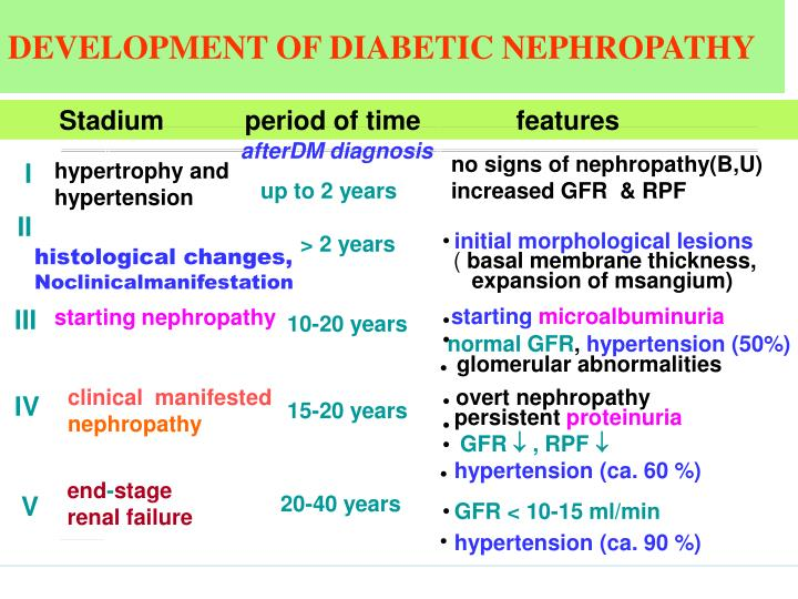 DEVELOPMENT OF DIABETIC NEPHROPATHY