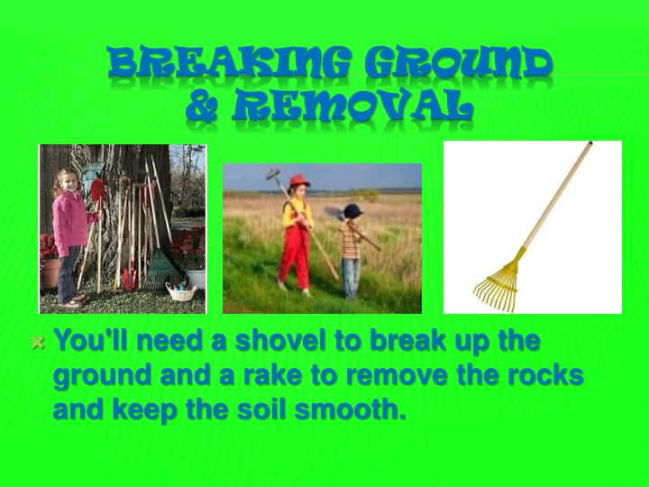 You'll need a shovel to break up the ground and a rake to remove the rocks and keep the soil smooth.
