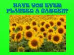 have you ever planted a garden