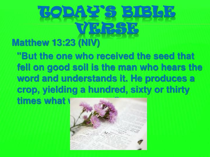 Today s bible verse