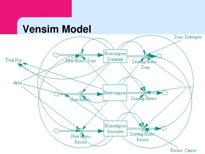 Vensim Model