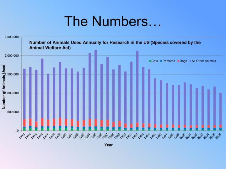 The Numbers…