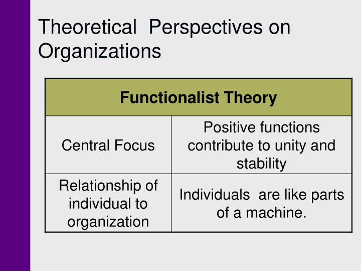 Theoretical  Perspectives on Organizations