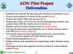 adn pilot project deliverables